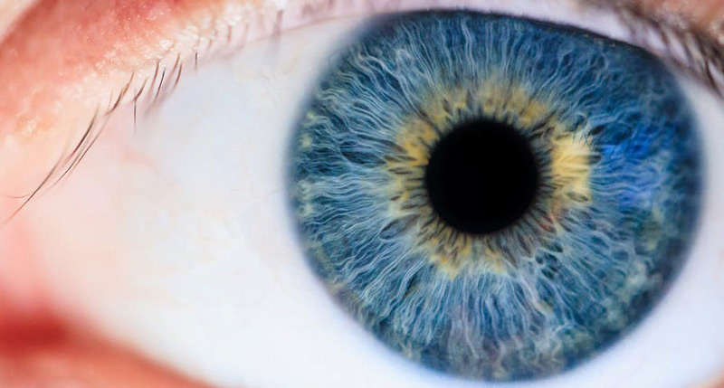 online exams recalled adult pediatric eyecare local eye doctor near you